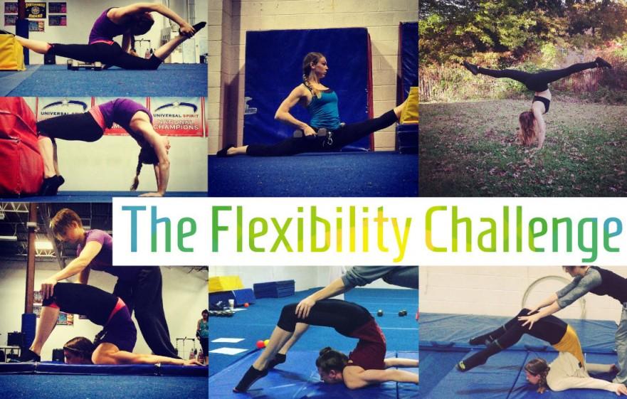 The Flexibility Challenge