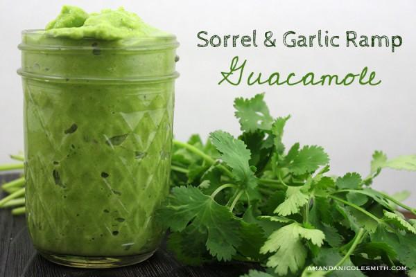 sorrel-garlic-ramp-gucamole
