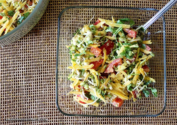 Spring Sprout Salad with Ginger Garlic Dressing