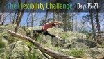 100 Day Challenge 2| Contortion Flexibility | Days 15-21