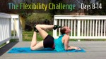 100 Day Challenge 2 | Contortion Flexibility | Days 8-14