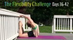 100 Day Challenge 2 | Contortion Flexibility | Days 36-42