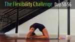 100 Day Challenge 2 | Contortion Flexibility | Days 50-56