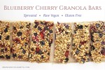 Blueberry Cherry Granola Bars | Raw Vegan, Sprouted, Gluten-free