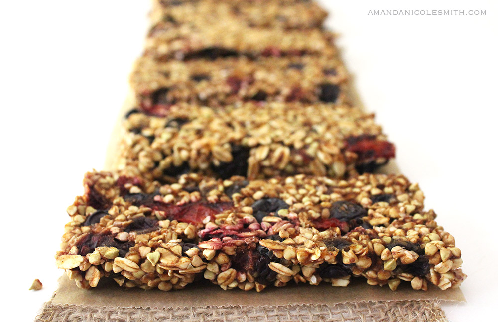Dehydrated Sprouted Blueberry Cherry Granola Bars