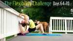 100 Day Challenge | Contortion Flexibility | Days 64-70