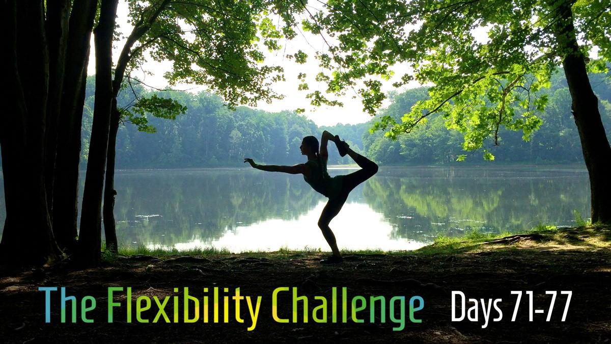 The Flexibility Challenge = Week 12
