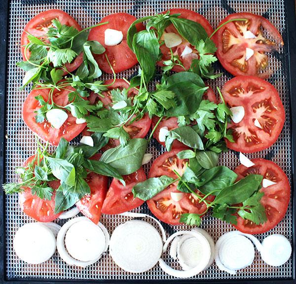 Dehydrated Raw Vegan Tomato Sauce