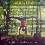 Get Ready for The 100 Day Flexibility Challenge!