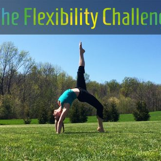 100 Day Challenge 3 | Contortion Flexibility | Weeks 1-2