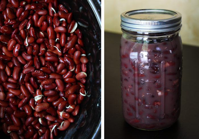 Sprouted & Canned Beans