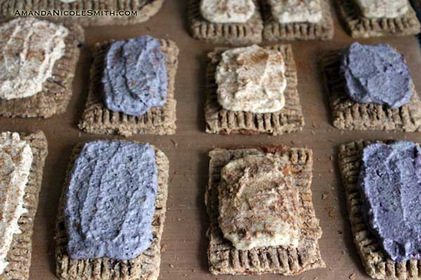 Raw Vegan Toaster Pastries
