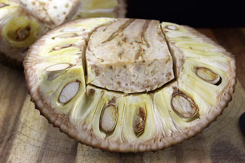cut the jackfruit core