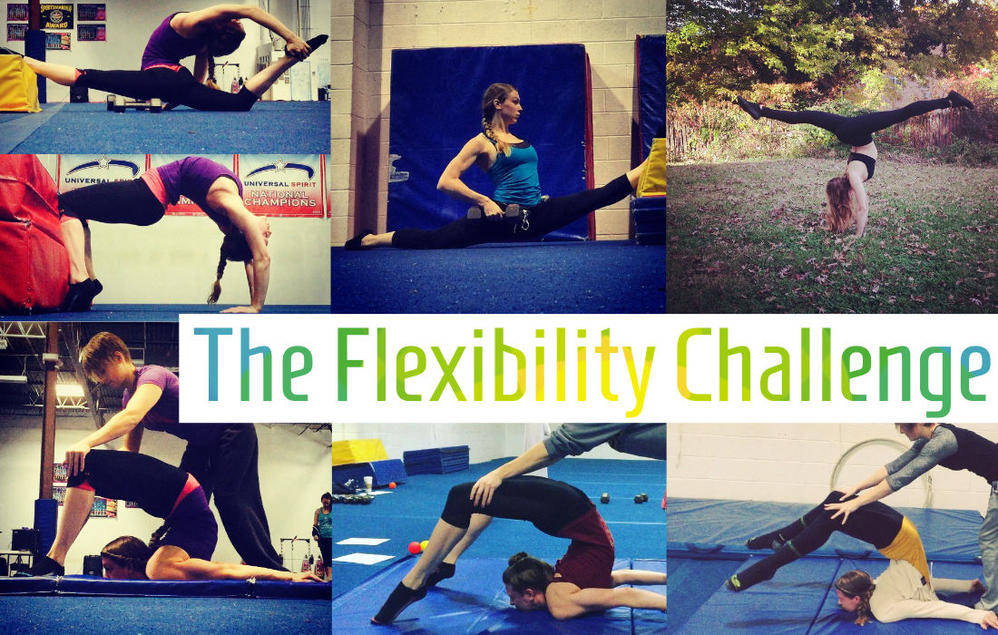 The Flexibility Challenge