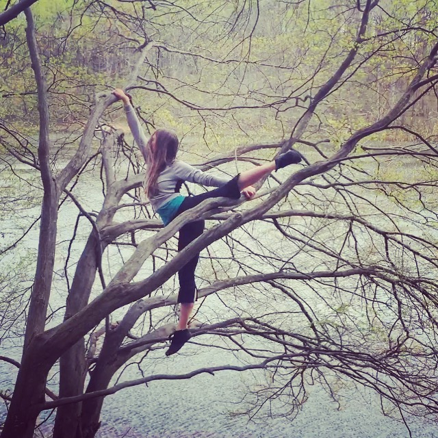 Tricks in The Trees