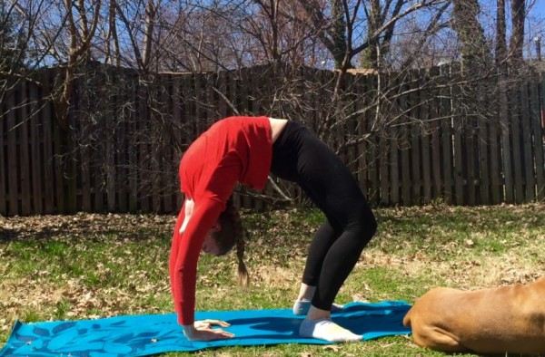 100 Day Flexibility Challenge | Backbend | Day 1