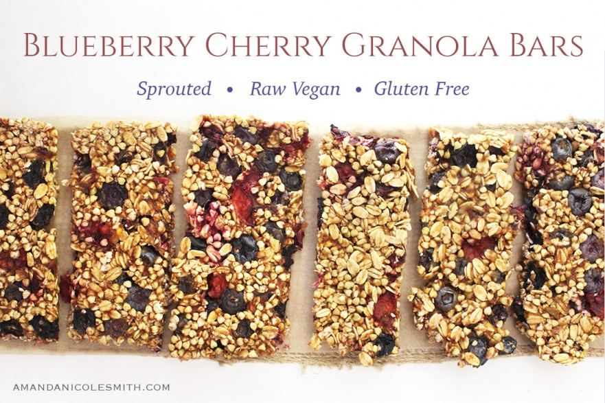 Sprouted Blueberry Cherry Granola Bars