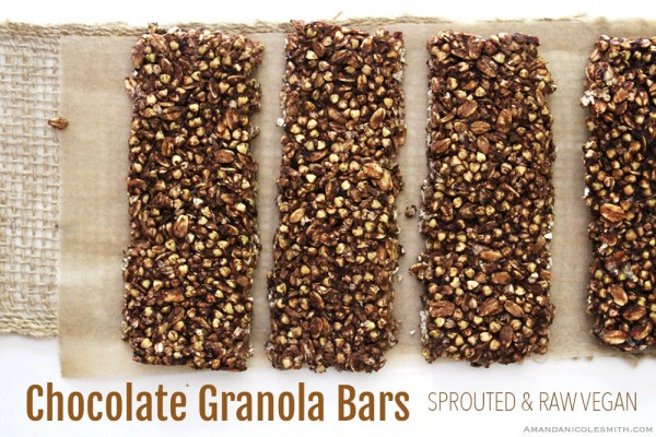 Spouted Raw Vegan Crunchy Chocolate Granola Bars
