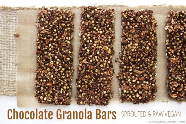 Spouted Raw Vegan Crunchy Chocolate Granola Bars