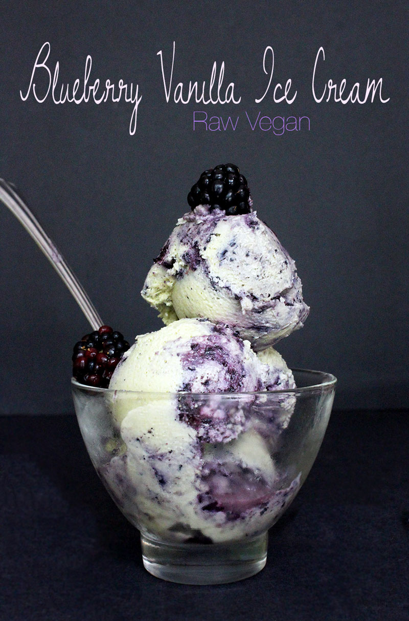 blueberry-vanilla-ice-cream-1