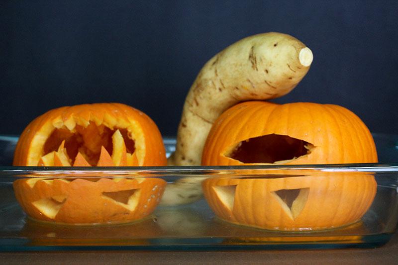 Roasting Sugar Pumpkins