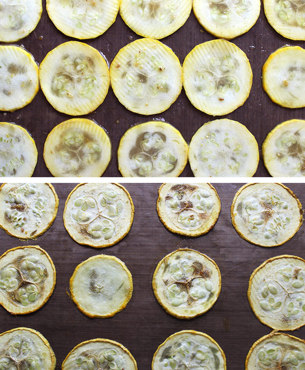 Dehydrating Hickory Zucchini Slices