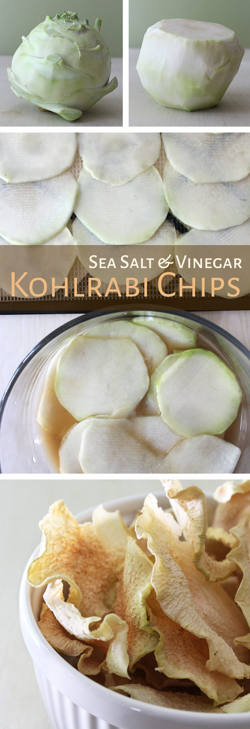 Dehydrated Sea Salt & Vinegar Chips
