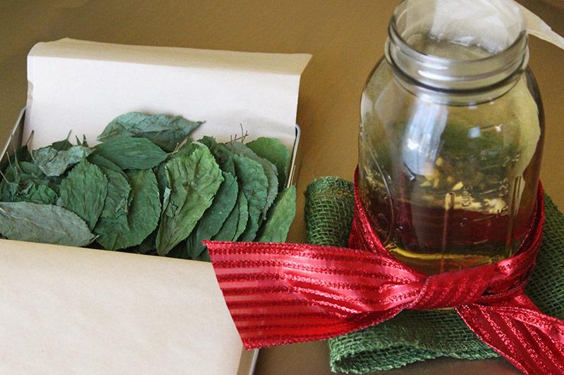 Spiced Tea | Ginseng, Ashwagandha & Holy Basil