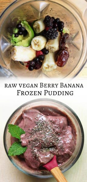 Berry Banana Frozen Pudding